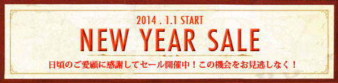 banner_486_2014newyearsale.jpg
